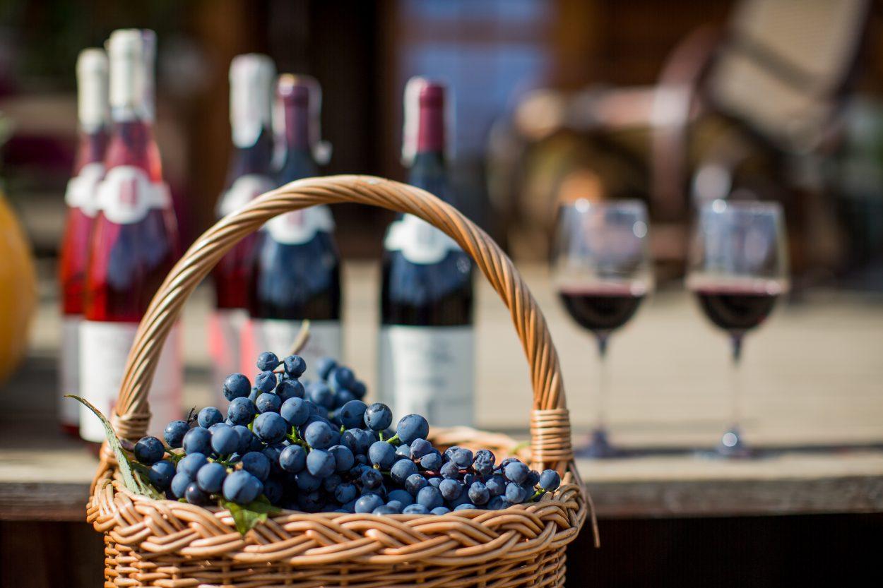 Od białego, przez różowe, do czerwonego - lubuski szlak wina oferuje cały przekrój trunków.